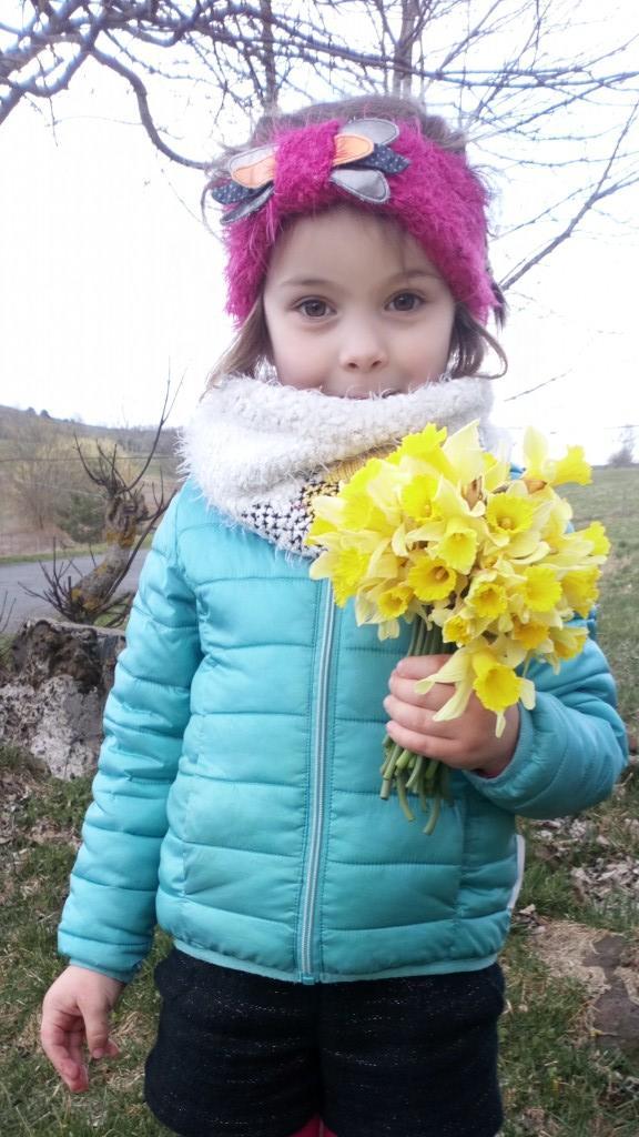 premier bouquet de jonquilles