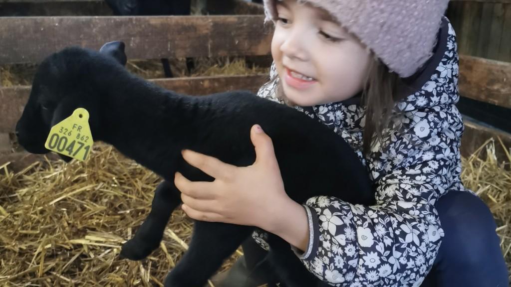 Louane  et l'agneau