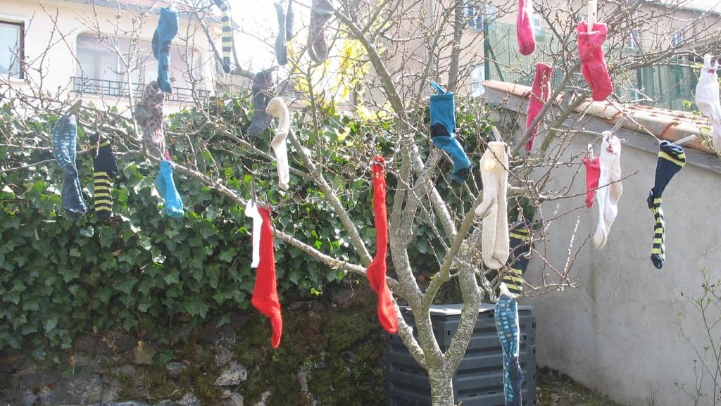 l 'arbre à chausettes