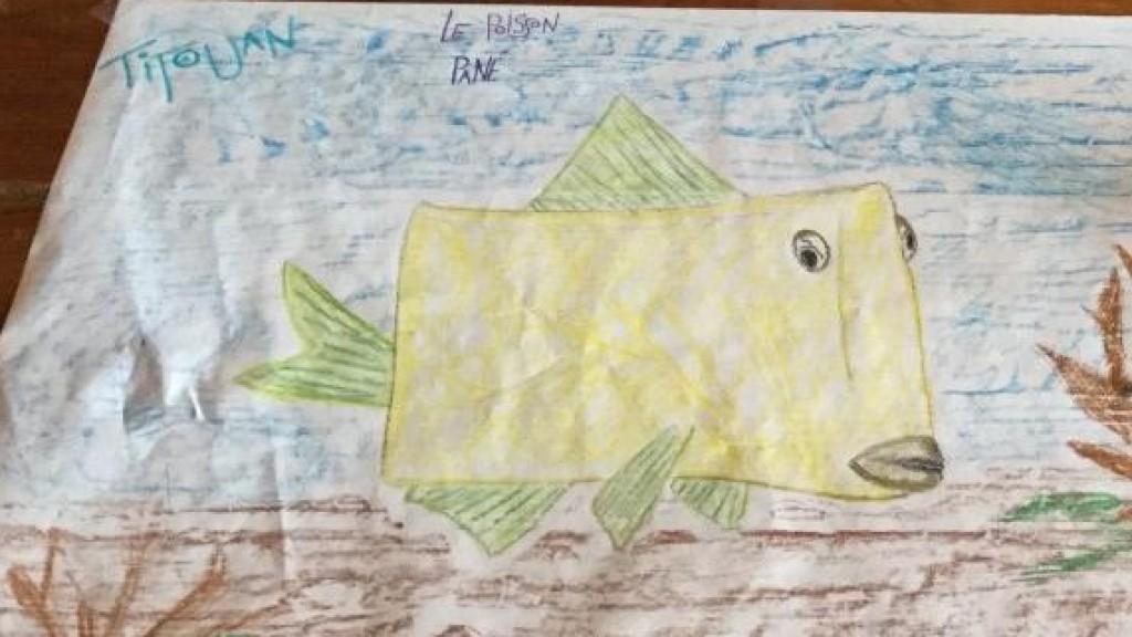 le poisson carré de Titouan